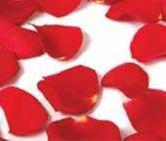 moles rose petals